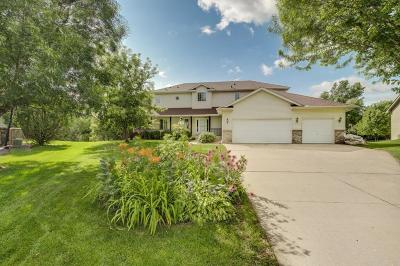 Watertown Single Family Home For Sale: 209 Meadow Sweet Place