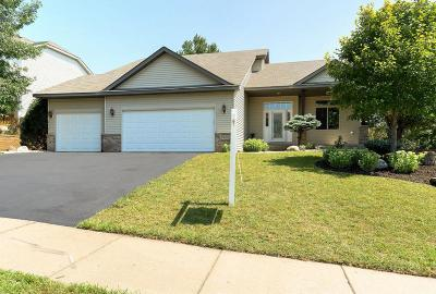 Rosemount Single Family Home For Sale: 13628 Birchwood Avenue