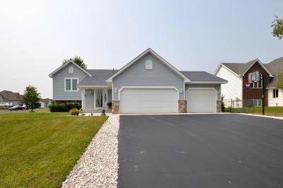 Hugo Single Family Home For Sale: 12810 Foxhill Avenue N