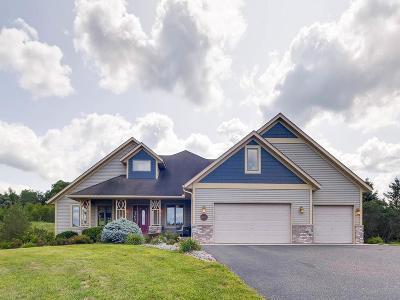 Hudson Single Family Home For Sale: 843 Prairie Meadows Drive