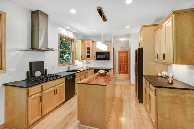 Elk River Single Family Home For Sale: 10573 201st Avenue NW