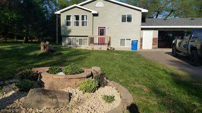 Pine City MN Single Family Home For Sale: $179,999