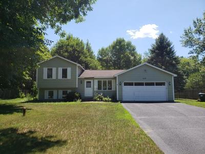 Andover Single Family Home For Sale: 4118 Genie Drive NW