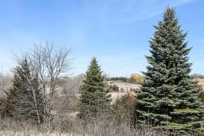 Lakeville Residential Lots & Land For Sale: 7745 230th Street