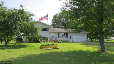 Pine City Single Family Home For Sale: 19548 Beroun Crossing Road