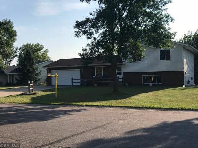 Single Family Home For Sale: 9351 Eider Lane