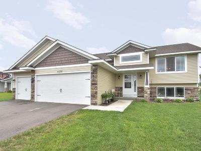 Single Family Home For Sale: 4392 89th Street NE