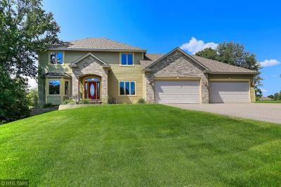 Ham Lake Single Family Home For Sale: 2641 146th Avenue NE