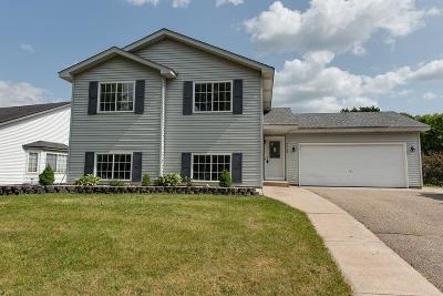 Farmington Single Family Home For Sale: 5880 180th Street W