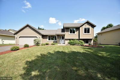 Andover Single Family Home For Sale: 14359 Bluebird Street NW