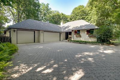 Deephaven, Long Lake, Minnetrista, Shorewood, Tonka Bay, Woodland, Excelsior, Minnetonka, Mound, Spring Park, Victoria, Greenwood, Minnetonka Beach, Orono, Saint Bonifacius, Wayzata Single Family Home For Sale: 3390 Maplewood Road