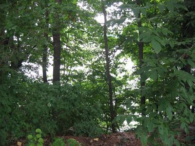 Menomonie Residential Lots & Land For Sale: N7594 State Road 25