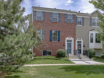 Shakopee Condo/Townhouse For Sale: 1719 Crossings Boulevard