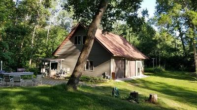 Pequot Lakes Single Family Home For Sale: 2942 River Road
