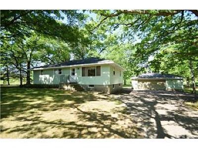 Hugo Single Family Home For Sale: 12084 Falcon Avenue N