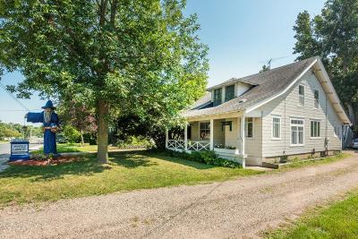 Wayzata, Plymouth Single Family Home For Sale: 244 Wayzata Boulevard E
