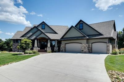 Afton Single Family Home For Sale: 2685 Meadow Point Path