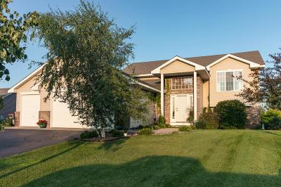 Single Family Home For Sale: 9776 Park Place Drive