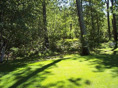 Breezy Point Residential Lots & Land For Sale: 0000 Humming Bear Lane