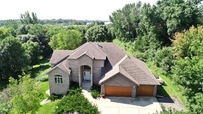 Hutchinson Single Family Home For Sale: 20404 205th Court