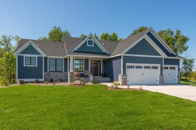 Ham Lake Single Family Home For Sale: 13812 Isetta Street