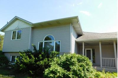 Andover Single Family Home For Sale: 16065 Crane Street NW
