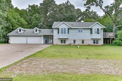 North Branch Single Family Home For Sale: 7172 384th Street