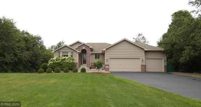 Isanti Single Family Home For Sale: 27230 Bayshore Drive