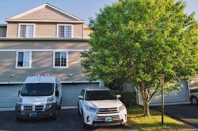 Wayzata, Plymouth Condo/Townhouse For Sale: 5025 Garland Lane N #G