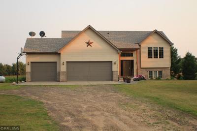 North Branch Single Family Home For Sale: 5338 278th Avenue NE