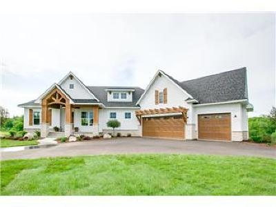 Hudson Single Family Home For Sale: 375 Meadow Valley Lane