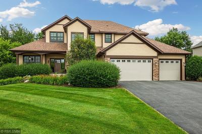 Prior Lake Single Family Home For Sale: 14079 Haas Lake Circle