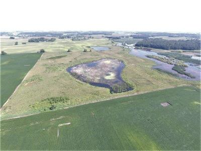 Kandiyohi County Residential Lots & Land For Sale: Xxx 22nd Avenue NW