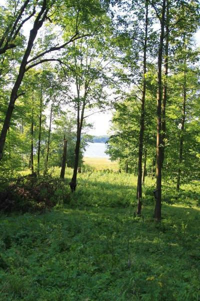 Aitkin Residential Lots & Land For Sale: 40924 320th Lane