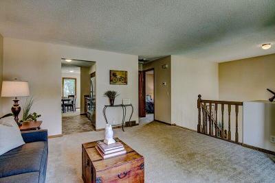 Minneapolis Single Family Home For Sale: 635 Buchanan Street NE