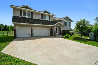 Montrose Single Family Home For Sale: 704 7th Street N