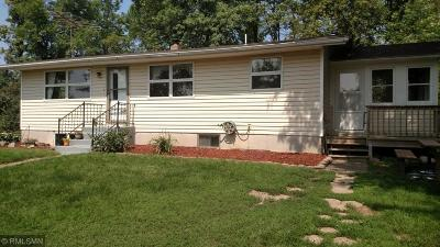 Borgholm Twp MN Single Family Home For Sale: $164,900
