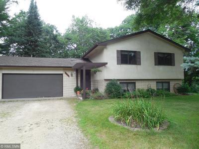 Ham Lake Single Family Home For Sale: 16120 Tippecanoe Street NE