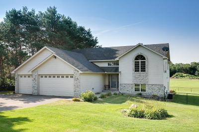 Ham Lake Single Family Home For Sale: 2962 149th Avenue NE
