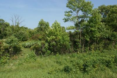 Litchfield Residential Lots & Land For Sale: Xxxx S Highway 22