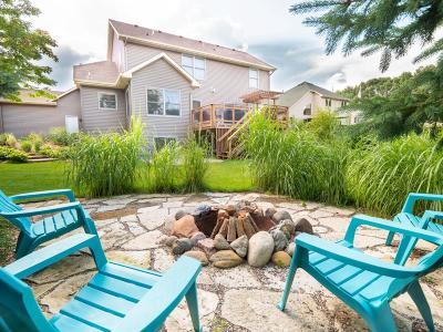 Blaine Single Family Home For Sale: 13075 Owatonna Street NE