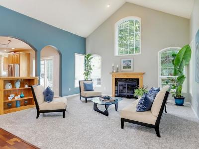 Stillwater Single Family Home For Sale: 1015 Sycamore Street W