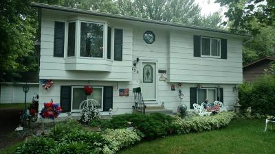 Montrose Single Family Home For Sale: 350 2nd Street S