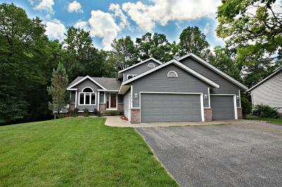 Prior Lake Single Family Home For Sale: 5615 Forest Court SE