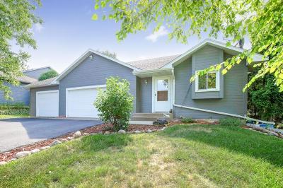 Albertville Single Family Home For Sale: 5055 Lansing Avenue NE