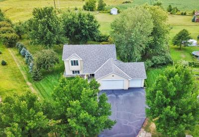 Single Family Home For Sale: 8915 Farmstead Avenue
