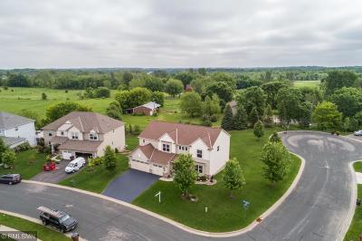 Prior Lake Single Family Home For Sale: 17801 Cleary Trail SE
