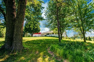 Faribault Single Family Home For Sale: 917a Saint Paul Avenue