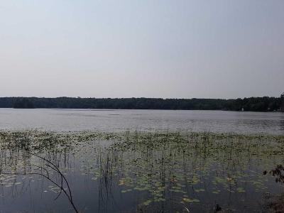Pequot Lakes Residential Lots & Land For Sale: Tbd Hurtig Road