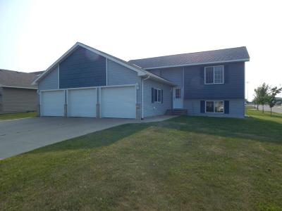 Freeport Single Family Home For Sale: 1000 3rd Avenue SE